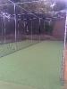 New Nets 2008